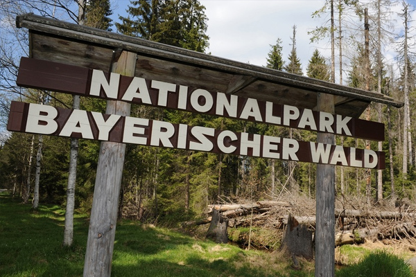 Naturpark Bayerischer Wald - Hotel am Regenbogen, Cham